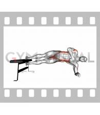 Side Plank Hip Adduction