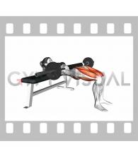 Barbell Hip Thrust (female)