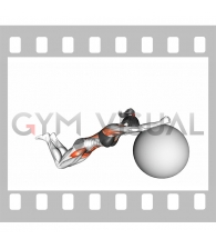 Stability Ball Rollout on Knees (female)
