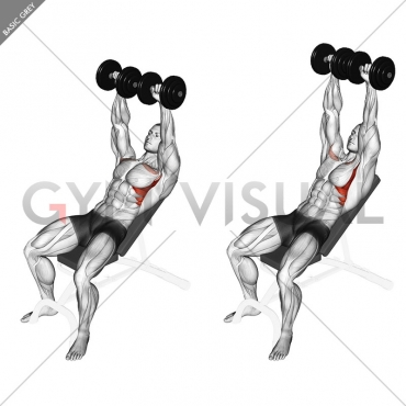 Dumbbell Incline Shoulder Raise