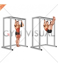 Arm slingers Hanging Straight Legs