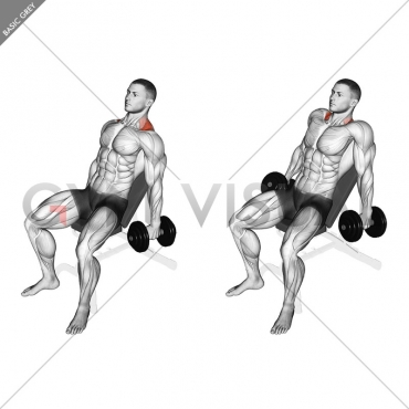 Dumbbell Incline Shrug