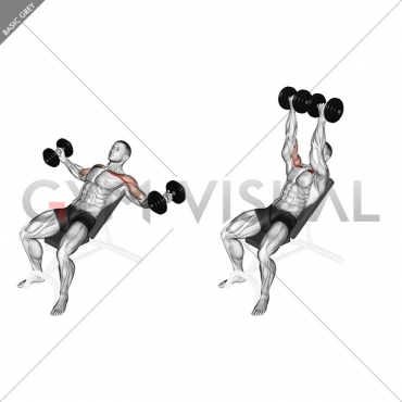 Dumbbell Incline Twisted Flyes