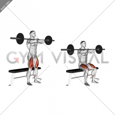 Barbell Bench Front Squat