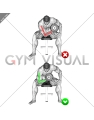 Concentration Curl - Arms (WRONG-RIGHT)