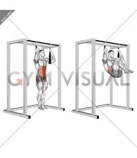 Arm slingers Hanging Bent Knee Legs