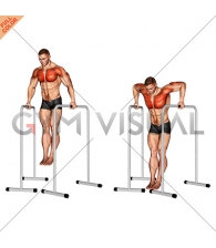 Wide-Grip Chest Dip on High Parallel Bars