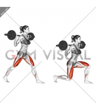 Barbell Split Squat (female)