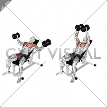 Dumbbell Incline Fly