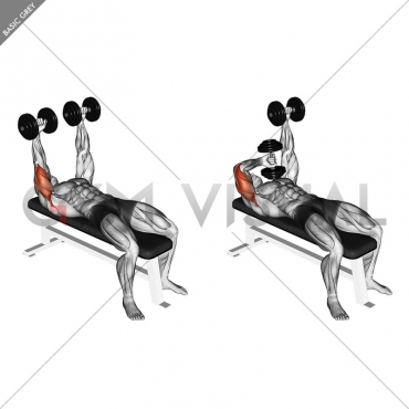 Dumbbell Lying  Extension (across face)