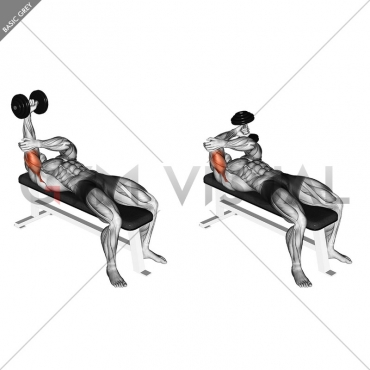 Dumbbell Lying One Arm Pronated Triceps Extension