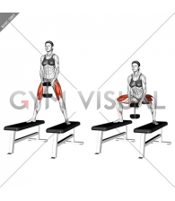 Dumbbell Sumo Squat off Benches (female)