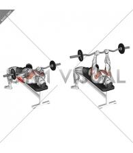 EZ-bar Close-Grip Bench Press