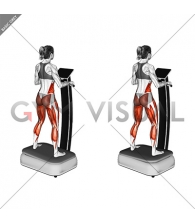 Vibrate Plate Standing (female)