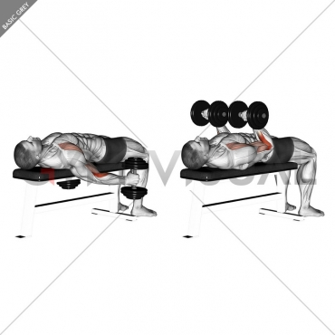 Dumbbell Lying Supine Curl