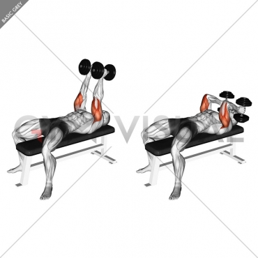 Dumbbell Neutral Grip Bench Press
