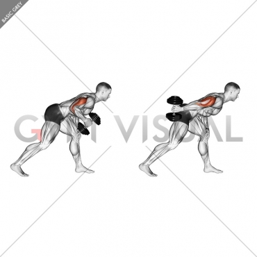 Dumbbell One Arm Kickback