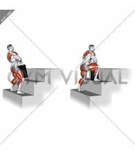 StrongMan Power Stairs