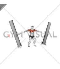 StrongMan Hercules Hold