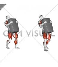 StrongMan Shield Carry