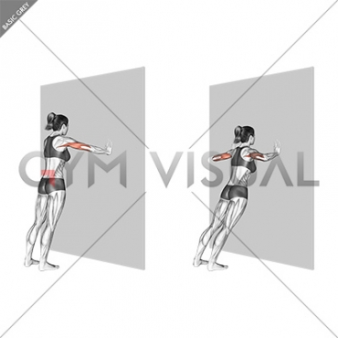 Wide Push-up (wall) (female)