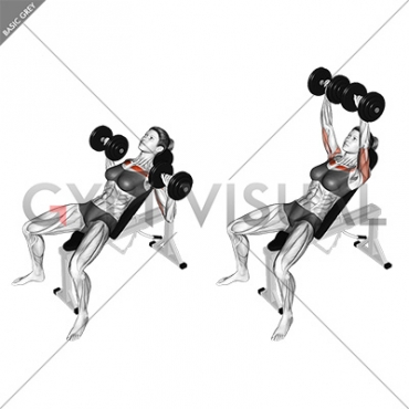 Dumbbell Incline Bench Press Female