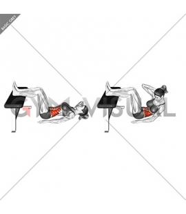 Oblique Crunch (Version 2) (female)