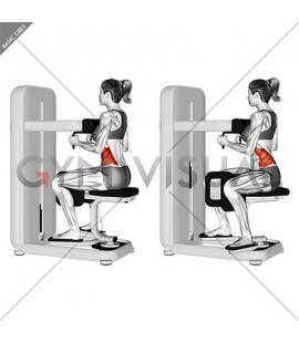 Lever Seated Twist (female)