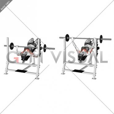 Barbell Decline Bench Press Female