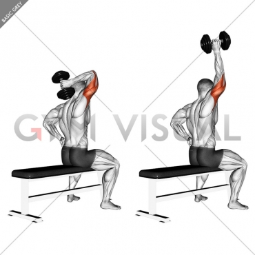 Dumbbell One Arm Triceps Extension (on bench)