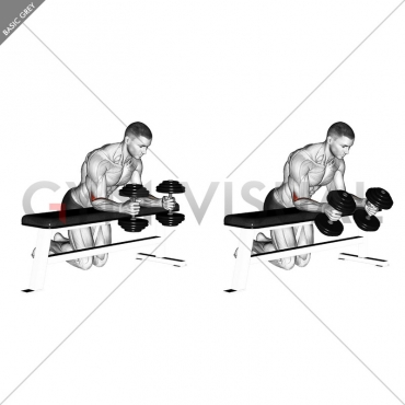 Dumbbell Over Bench Neutral Wrist Curl