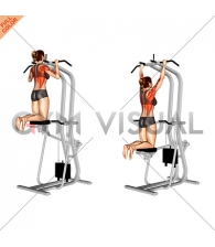 Assisted Pull up (female)