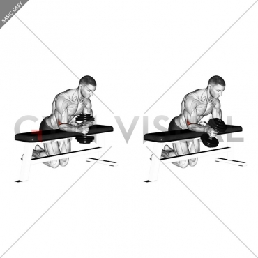 Dumbbell Over Bench One Arm  Neutral Wrist Curl