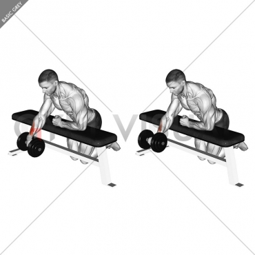 Dumbbell Over Bench One Arm Wrist Curl