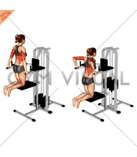Assisted Triceps Dip (kneeling) (female)