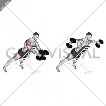 Dumbbell Reverse Fly