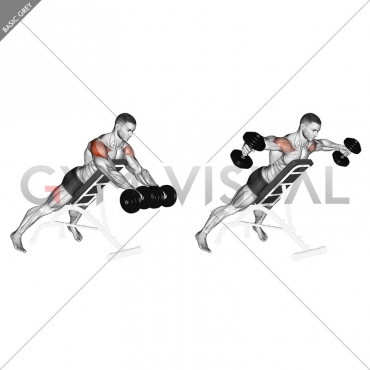 Dumbbell Rotation Reverse Fly