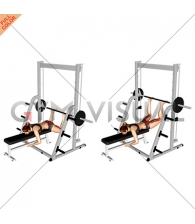 Smith Reverse Hyperextension (female)