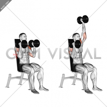Dumbbell Seated Alternate Press