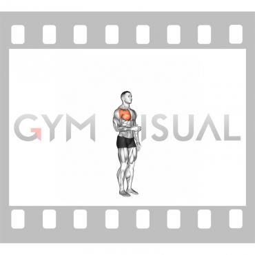 Shoulder - Medial Rotation (Internal Rotation)