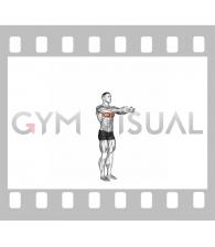 Shoulder - Transverse Flexion