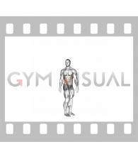 Spine (Lumbar) - Rotation