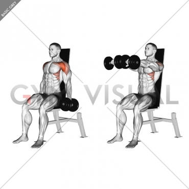 Dumbbell Seated Front Raise