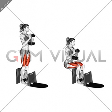 Dumbbell Supported Squat (female)