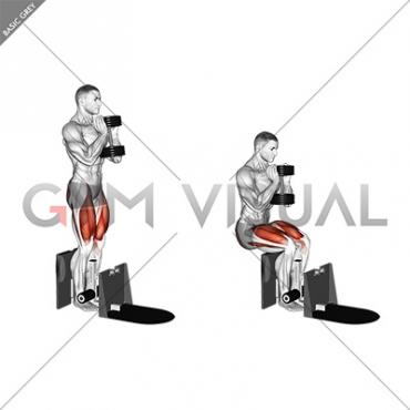 Dumbbell Supported Squat