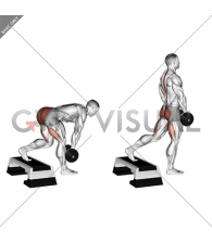 Dumbbell Single Leg Deadlift with Stepbox Support