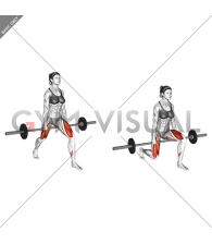 Barbell Split Squat (VERSION 2) (female)