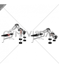 Pike Push-up (on Bench) (female)