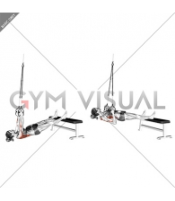 Suspender Weighted Inverted Row (female)