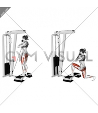 Cable Rear Lunge from Stepbox